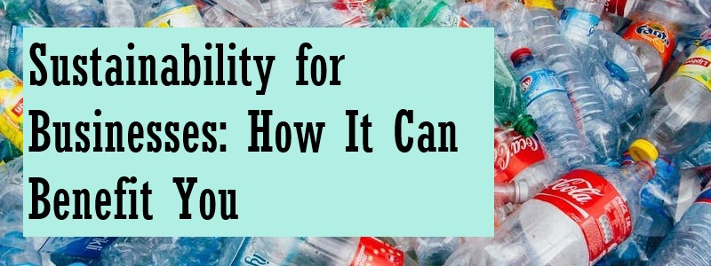 title image for sustainability blog featuring empty plastic bottles