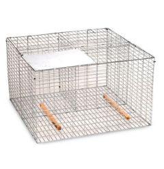 Larsen Cage Trap