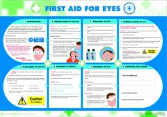 First Aid for Eyes Poster (420 x 590mm)