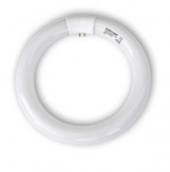 Replacement UV Bulb - 1 x 22 Watt Circleline