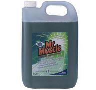 Mr Muscle Floor Cleaner (5 litre)