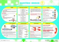 Health and Safety Electric Shock Poster (420 x 590mm)