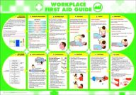 Workplace First Aid Guide Poster (420 x 590mm)